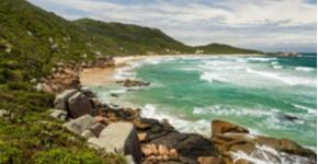 Florianópolis e a Ilha de Santa Catarina oferecem diversas opções de praias para todos os gostos!