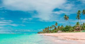 Vai passar as férias na capital de Alagoas? Aproveite as praias, o centro e a rica história da região.